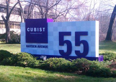 Cubist 7