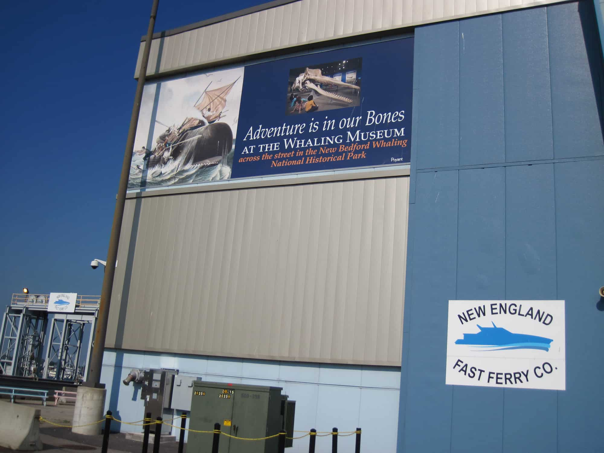 Whaling Museum1