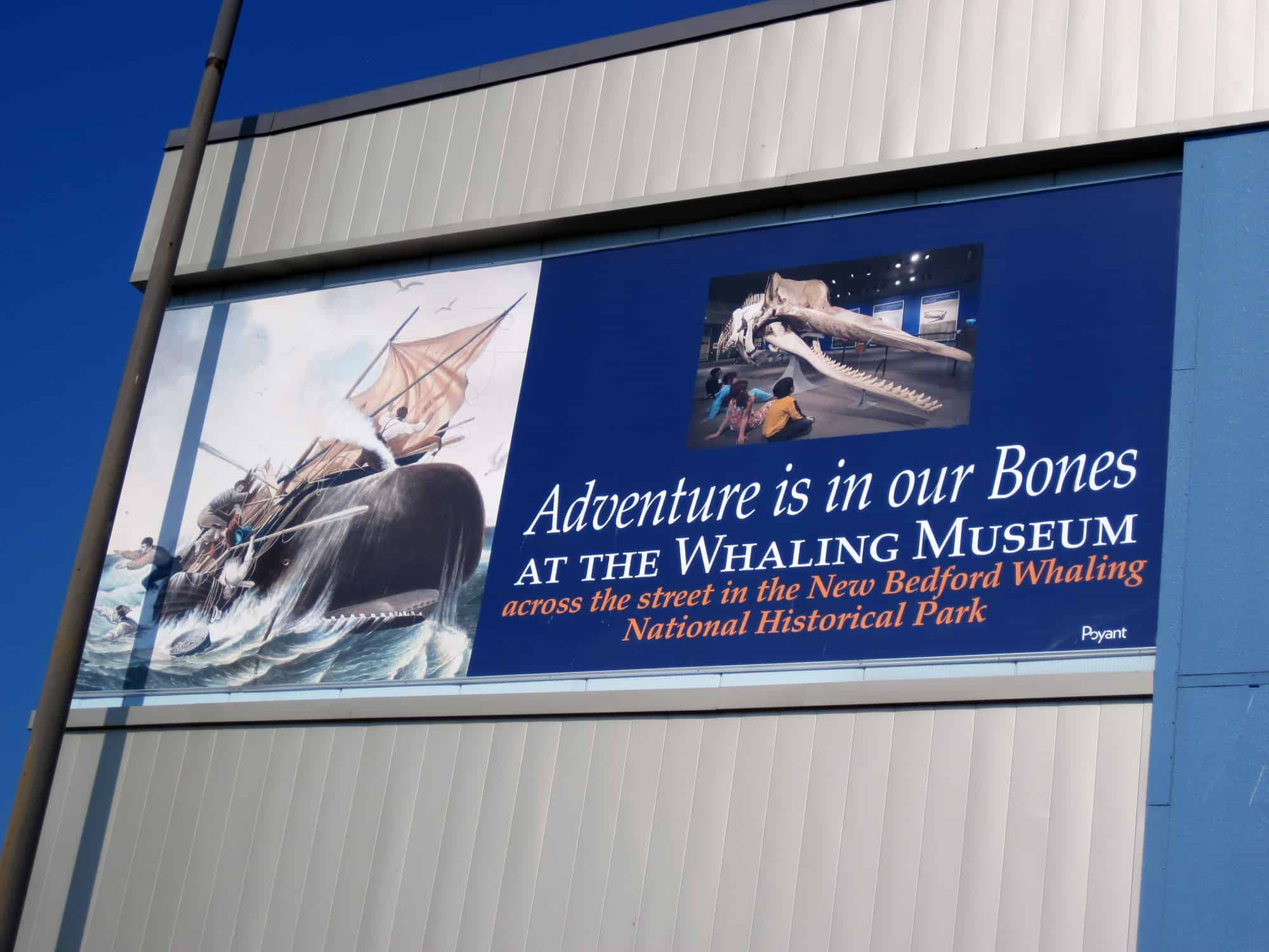 Whaling Museum3