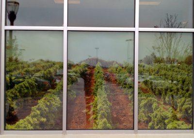 Wines and More Wareham 5