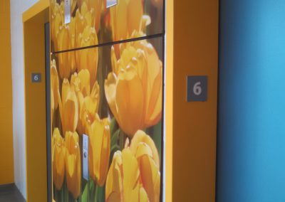 Elevator Graphics